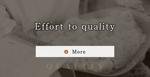 Effort to quality